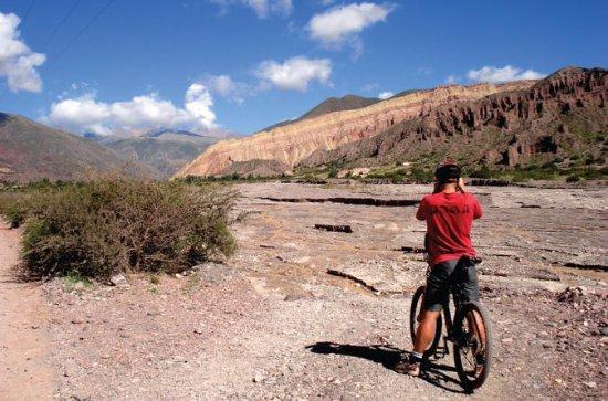 Halvdagers Mountain Bike Tour til...