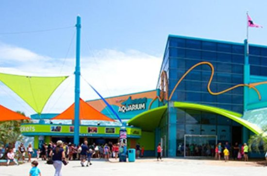 Ripleys Aquarium Myrtle Beach Eintritt