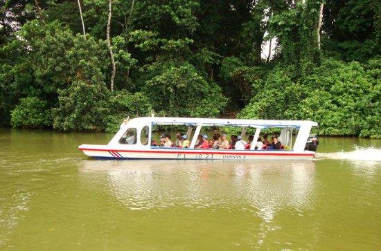 Landudflugt: Tortuguero Canal Eco...