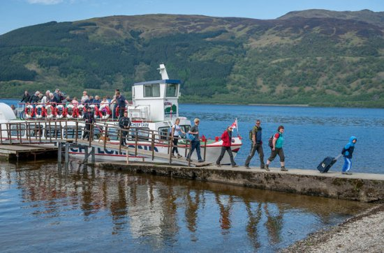 Ben Lomond Hike con Return Cruise su