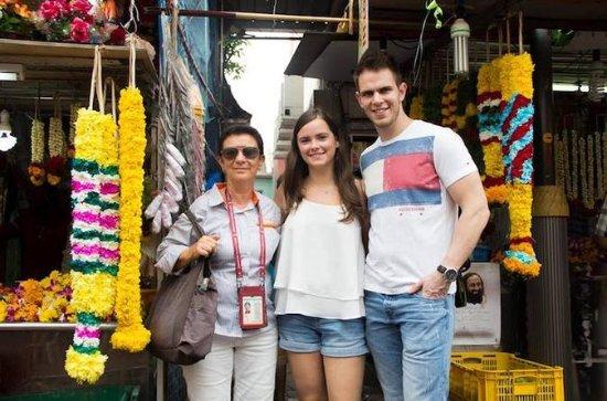 Dual City Tour: Contrasting Singapore and Johor Bahru
