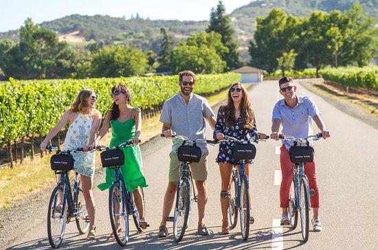 Excursion en vélo autoguidée dans la...