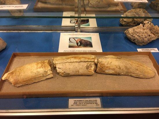 The Kern Valley Museum: photo3.jpg