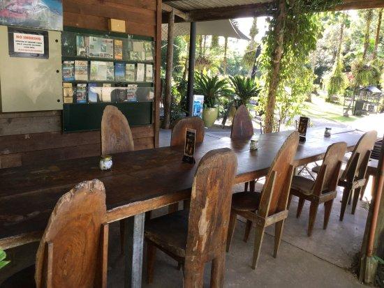 Lync-Haven Rainforest Retreat, Cabins, Camping & Wildlife Experience照片