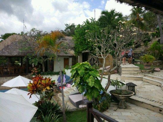 Coconuts Beach Resort: kolam renang dan resto