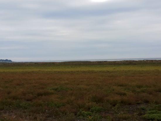 Loddekopinge, السويد: Salvikens strandangar