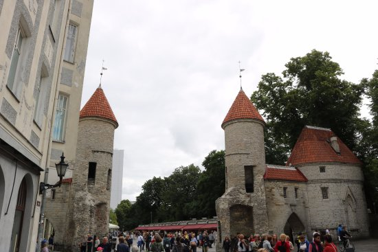 beautiful flower marekt  picture of viru gates, tallinn  tripadvisor, Beautiful flower