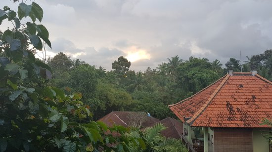 Padma Ubud Retreat 이미지