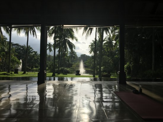 The Farm at San Benito: Early morning yoga view