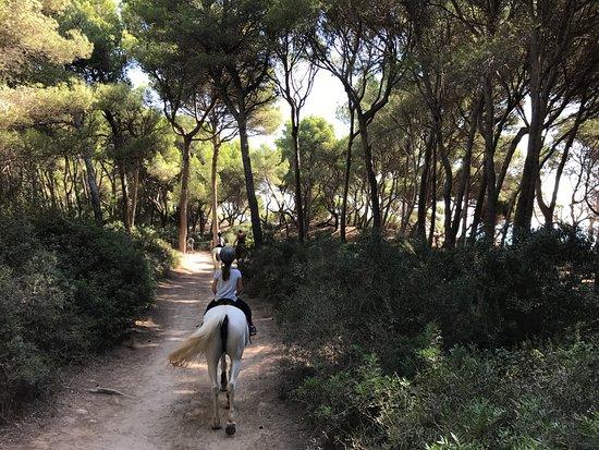 Cala Ratjada, Spanien: Rancho Bonanza