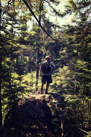 Gorman Chairback Lodge and Cabins: photo0.jpg
