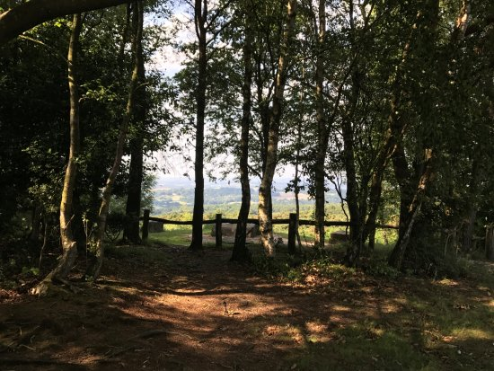 Wych Cross, UK: View from The Enchanted Place