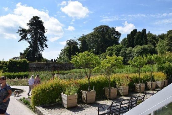 St Austell, UK: Gardens