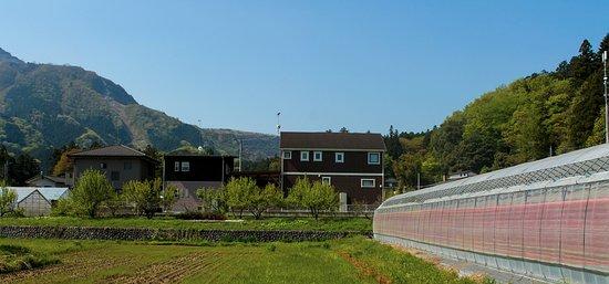 Towards Hitsujiyama park through Chichibu village