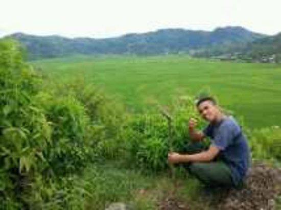 Lingko Spider Web Rice Fields - Walking Tours: 20160721221426_large.jpg