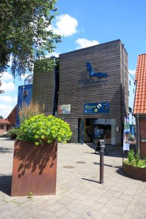 Bad Segeberg, Tyskland: Noctalis