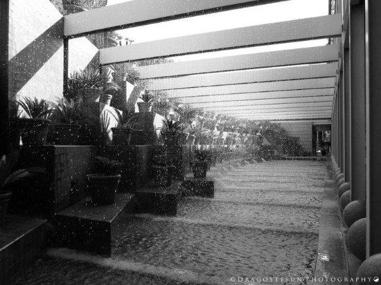 Hotel Arts Barcelona Photo