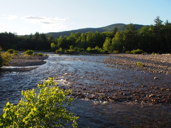 Villager Motel: Path along the Saco River behind the motel