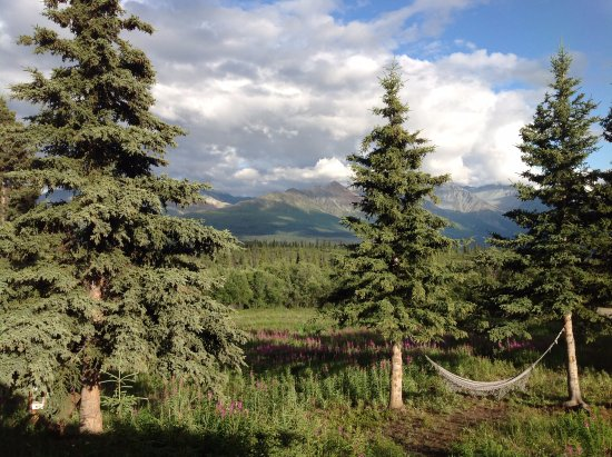 Majestic Valley Wilderness Lodge : View from Grizzly Cabin, late July