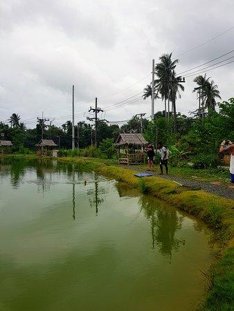 Rawai, Tailândia: 20170804_162252_large.jpg