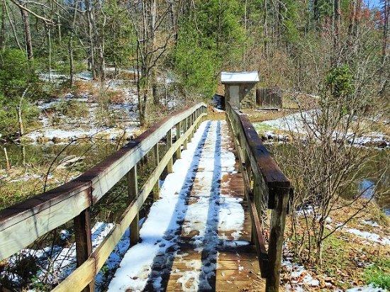 Bent Creek Experimental Forest: bridge on trail