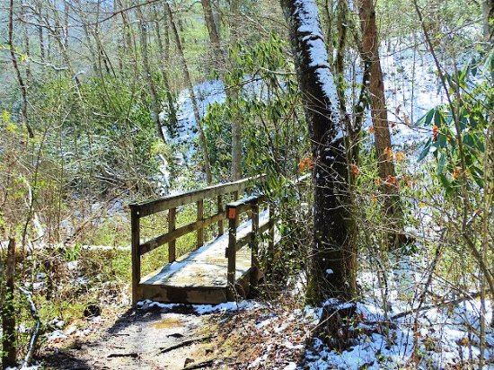 Bent Creek Experimental Forest: trail