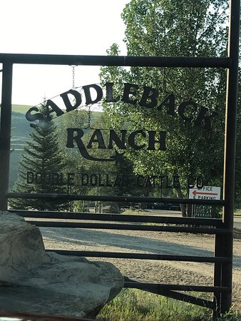 Saddleback Ranch: photo4.jpg