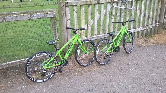 Our new children's bikes ready for their first customers in Allonby.