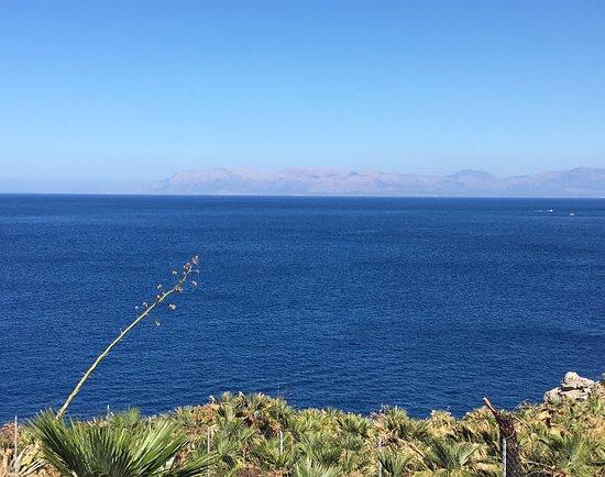 Zarbo di Mare: photo1.jpg