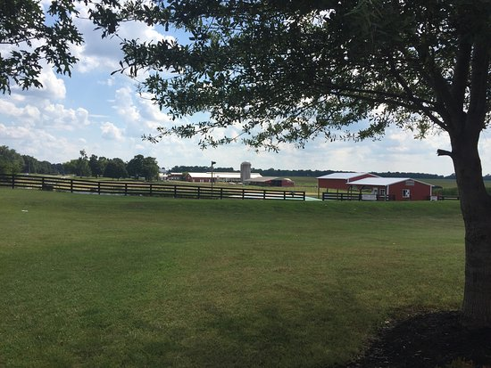 Chaney 39 S Dairy Barn Bowling Green Ky Top Tips Before You Go With 55 Photos Tripadvisor