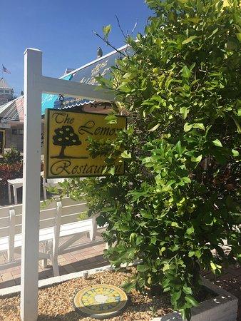 The Lemon Tree: photo0.jpg