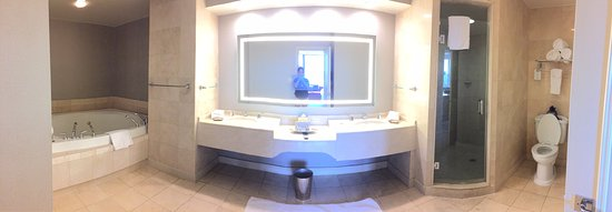 Royal Sonesta Harbor Court Baltimore: AMAZING Bathroom in the Suites