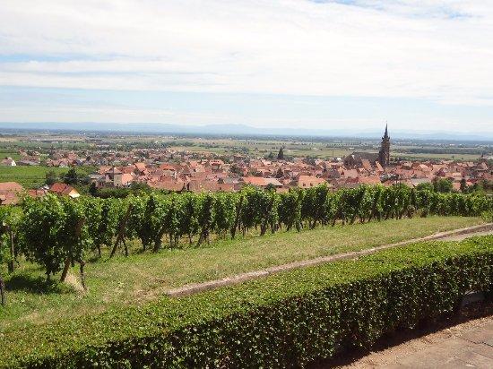 Dambach-la-Ville 사진