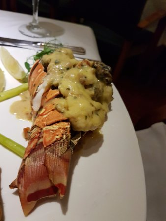 The Wine Cellar: Lobster Thermidor