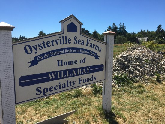 Oysterville Sea Farms