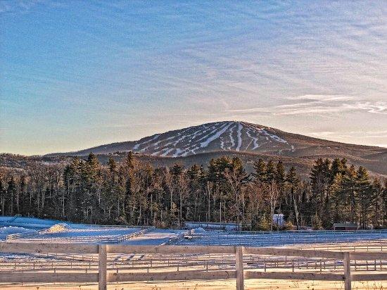 Stratton Mountain, เวอร์มอนต์: photo3.jpg
