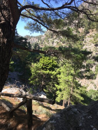 Agia Irini Gorge: photo2.jpg