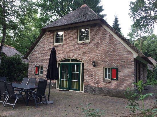 Ees, Nederland: photo0.jpg