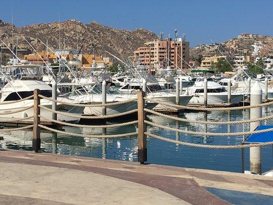 Hotels Near Mango Deck Cabo