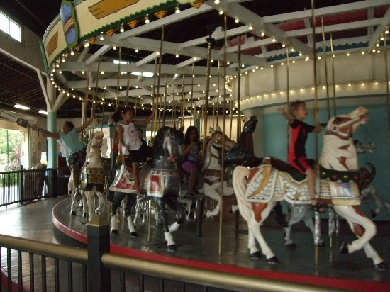 Eldridge Park : The carousel.