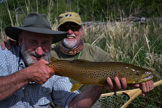 Old Friends And Large Brown Trout On Montanas Big Hole River