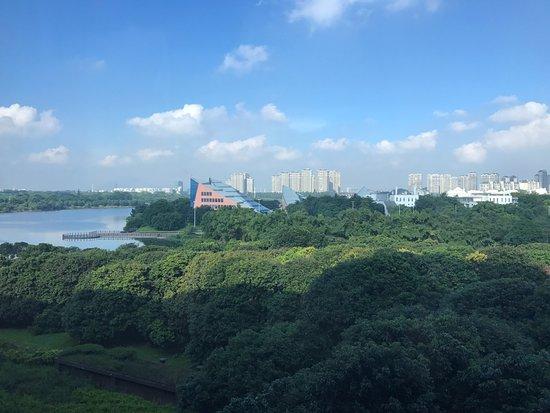 Hyatt Regency Dongguan: IMG_20171002_064053_large.jpg
