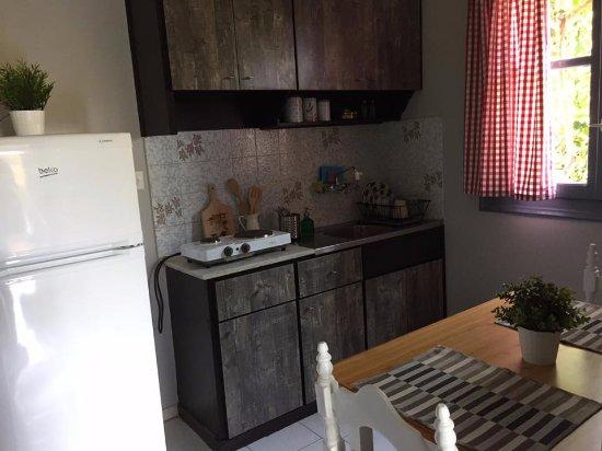 Kakovatos, Griekenland: Standard apartment -kitchen