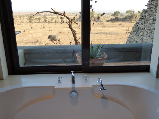 Four Seasons Safari Lodge Serengeti: can watch the animals wander by while taking a bath or shower!