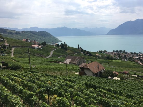 Grandvaux, Suiza: Views from the terrace!