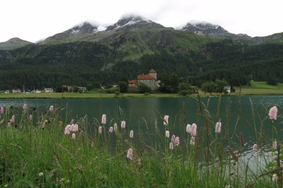 Silvaplana, Schweiz: Lake and castle