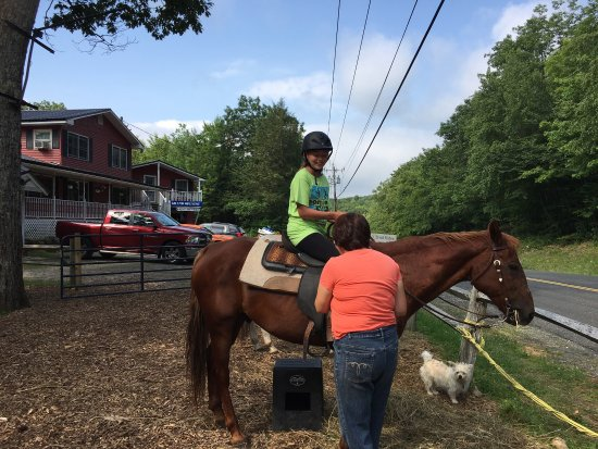 Rocke N Horse Farm : fun horseback riding