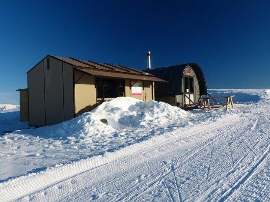 Snow Farm: photo2.jpg