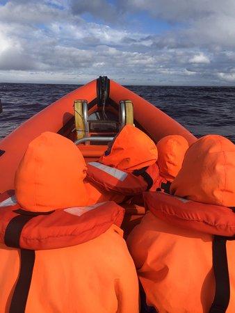 Caithness Seacoast: photo0.jpg