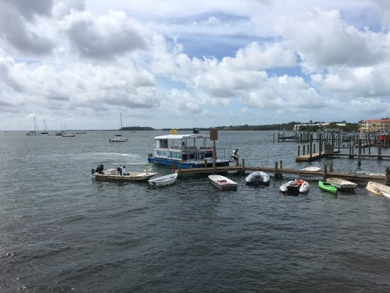 Paradise Boat Tours Sarasota